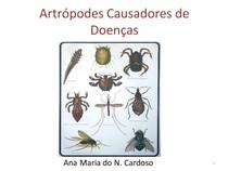 Artrópodes causadores de doenças