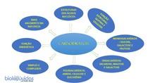 Carboidratos - MAPA MENTAL