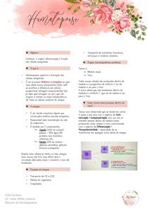 hematopoiese