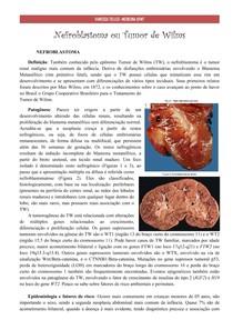 Nefroblastoma ou Tumor de Wilms