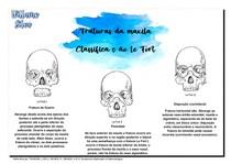 Fraturas da maxila CLASSIFICAÇÃO LE FORT