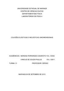5. Colisões- Relatório de Laboratório de Física Geral 1