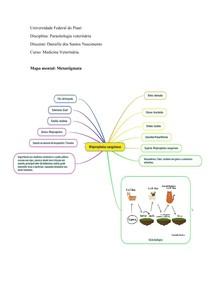 Mapa mental parasitologia/ metastigmata
