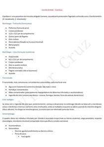 Giardia lamblia - Giardíase