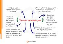 Princípio da verdade real - Mapa Mental