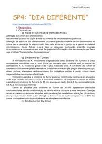 SP4_ DIA DIFERENTE