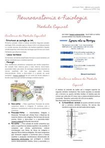 Resumo: Neuroanatomia e Fisiologia - Medula espinal