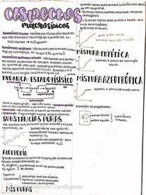 aspectos macroscópicos