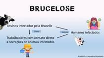 BRUCELOSE- exemplo de efeito causal direto e indireto