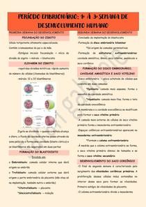Período embrionário - 1º a 3º semana de desenvolvimento humano
