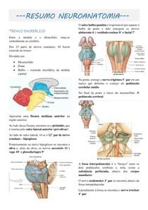 Resumo Neuroanatomia