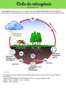 Cilco do nitrogênio