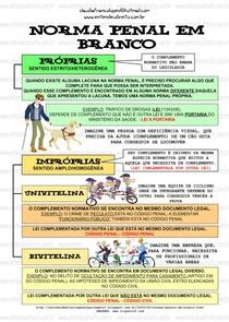 Norma Penal Em Branco 2