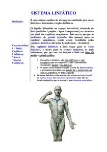 ANATOMIA II   Sistema Linfatico