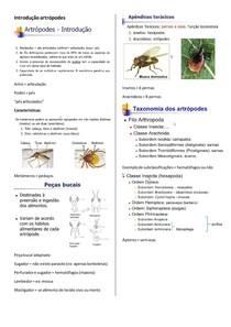 Introdução artrópodes