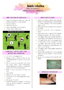 Resumo de Tuberculose