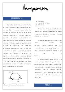 Bioquimica I - CARBOIDRATOS
