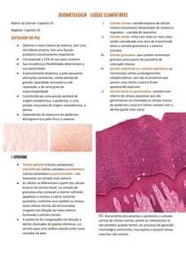 Dermatologia - Lesões elementares FISIOPATO