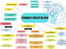 MAPA MENTAL - TRONCO ENCEFÁLICO