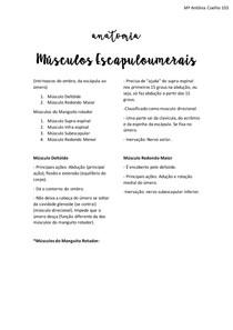 Musculos Escapuloumerais e plexo braquial