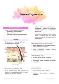 Sistem Tegumentar (Lesões Elementares) - Semiologia