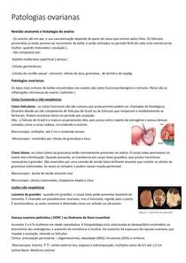Patologias do ovário- ROBBINS