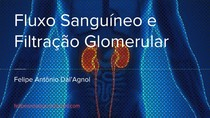 Fluxo sanguíneo e Filtração glomerular