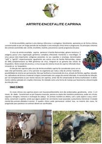 artrite encefalite caprina vacina