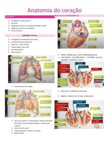Anatomia do coração- SANAR
