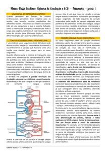 Fisio - Marca-passo cardíaco, sistema de condução