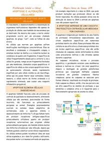 Apoptose e alterações celulares