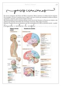 Pares cranianos e condições clínicas