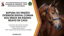 RUPTURA DO TENDÃO EXTENSOR DIGITAL COMUM DOS DEDOS EM EQUINO: RELATO DE CASO