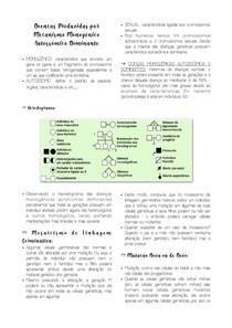 Doenças Produzidas por Mecanismo Monogênico Autossômico Dominante