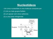 [Bioquímica] Aula de Nucleotideos