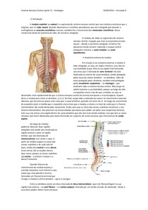 Sistema Nervoso Central (parte 2) - Histologia