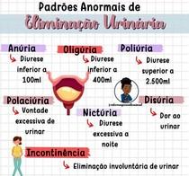 terminologia urinária