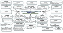 Mapa Conceitual de Parasitologia Veterinária - Conceitos Básicos