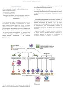 Resumo de Hematologia