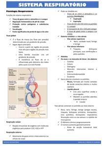PROBLEMA 6 SISTEMA RESPIRATÓRIO(resumo)