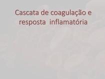 Cascata de coagulação e resposta inflamatória