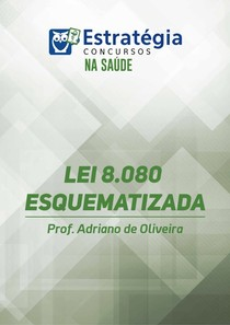 LEI 8080 ESQUEMATIZADA