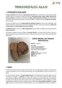 [RESUMO] NEUROANATOMIA DO TRONCO ENCEFÁLICO