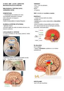 ASPECTOS MACROSCÓPICOS DA HIPÓFISE