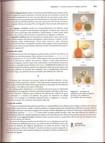 Capitulo 8   Conceitos básicos de ligação química