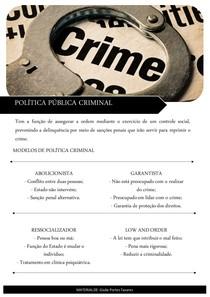 Política Pública Criminal