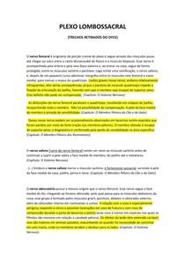 Plexo lombossacral - Nervos, lesões - Trechos do DYCE