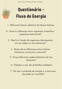 Questionário - Fluxo de Energia