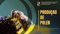 Produção de pólen