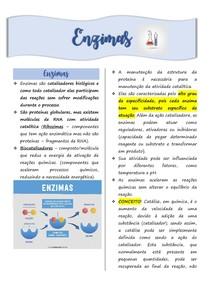 AULA 12 Enzimas e Cinética Enzimática